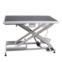 Aeolus Super Low Electric Grooming Table