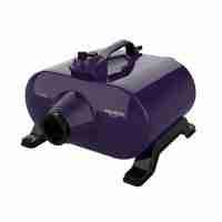 Typhoon Double Motor Blaster with Heat by Shernbao - Purple