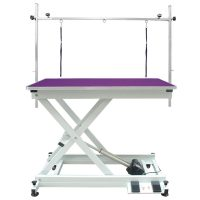 Orion Electric Table - Purple